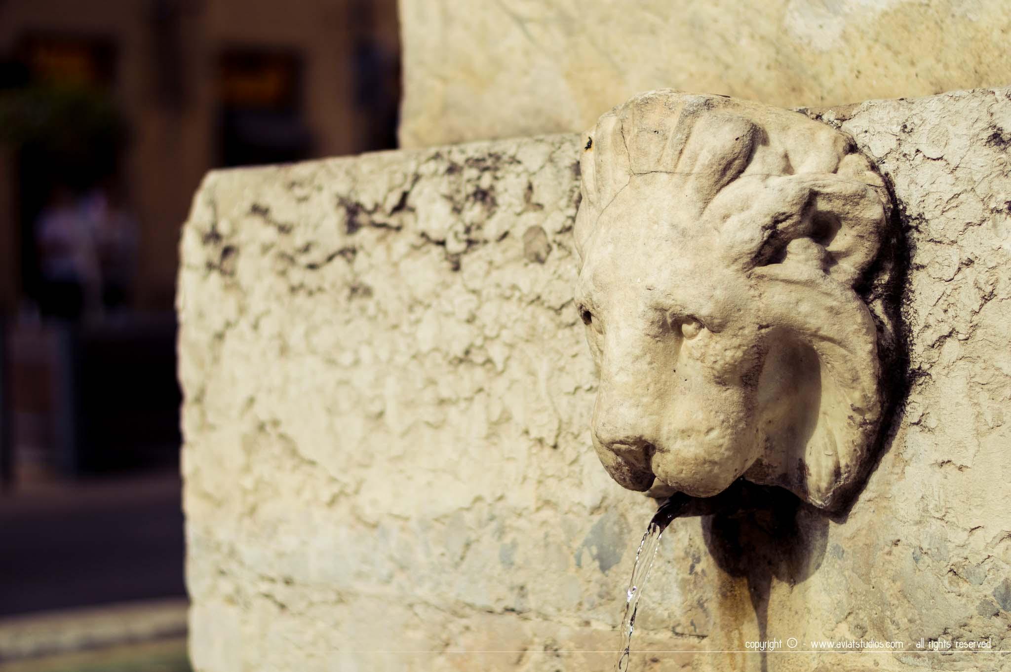 Détail d'une fontaine d'Aix-en-Provence - un lion