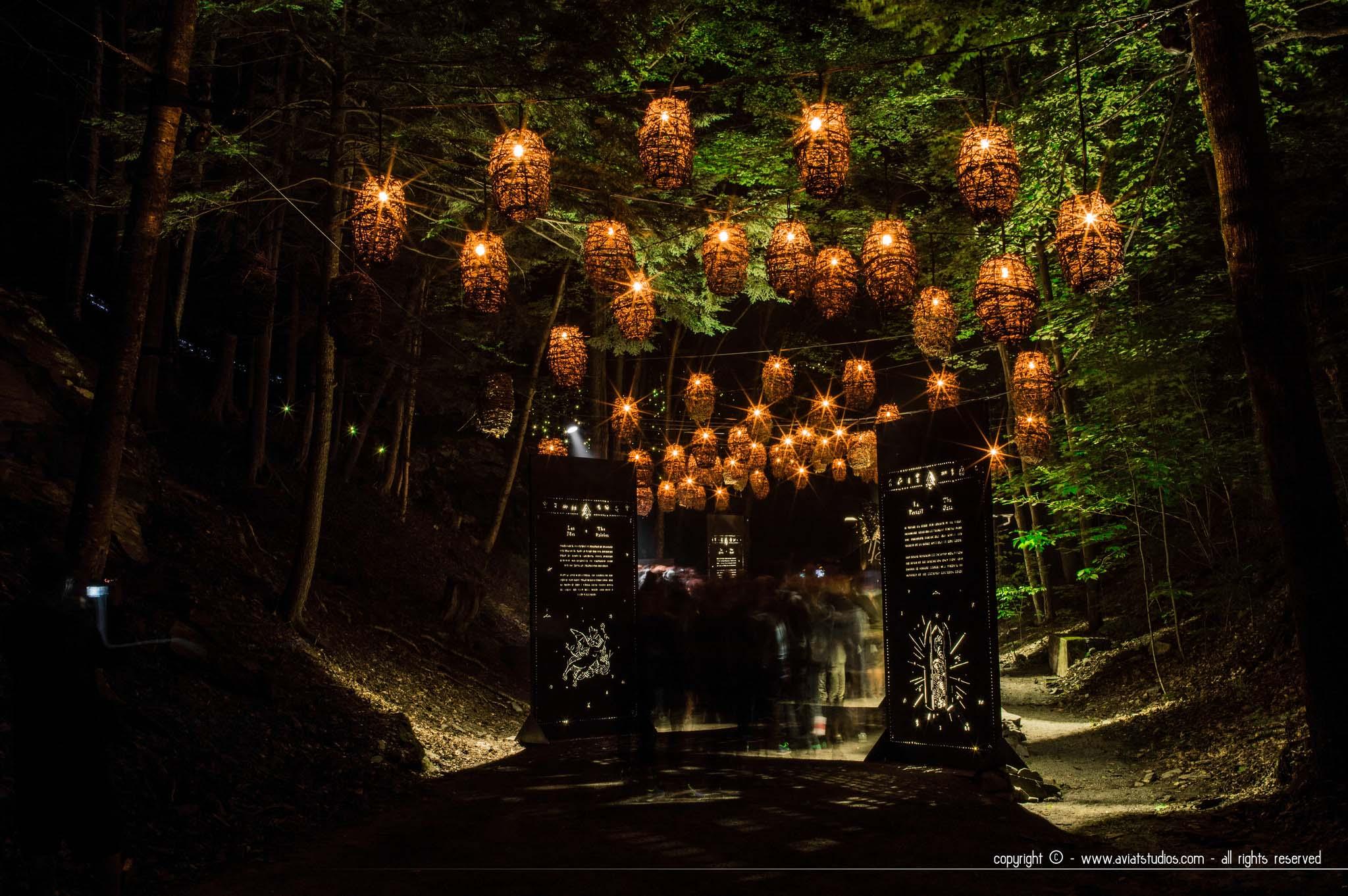 Le parc de Coaticook de jour comme de nuit : randonnée & Foresta Lumina
