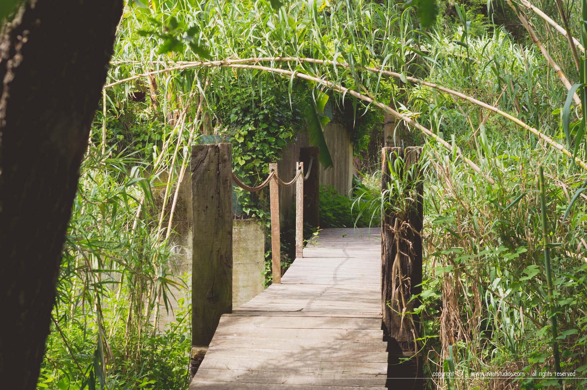 Saint-Paul-de-Vence - Le petit pont