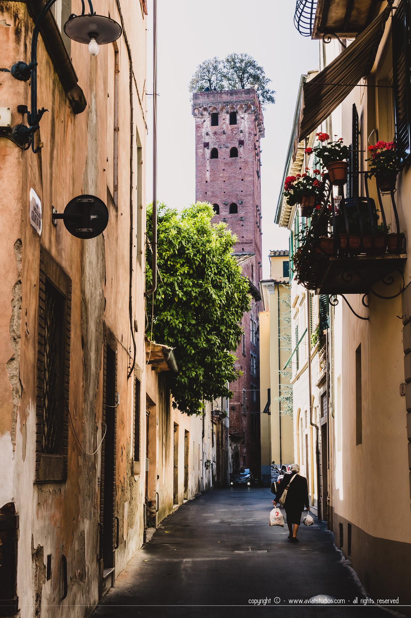 journée à Lucca - la Torre Guinigi au fonf de la rue Sant'Andrea