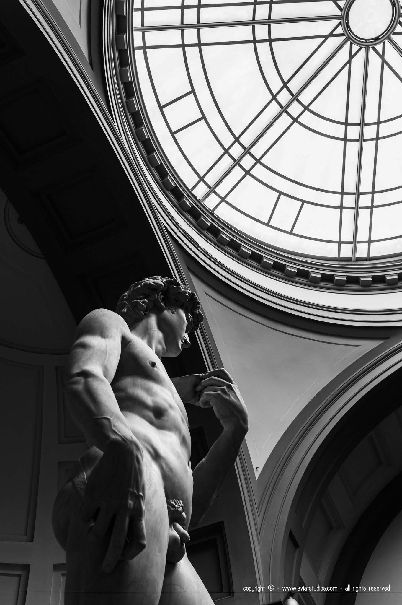 Un week-end à Florence - le David de Michel Ange à la galerie de l'Académie en noir et blanc sous une verrière