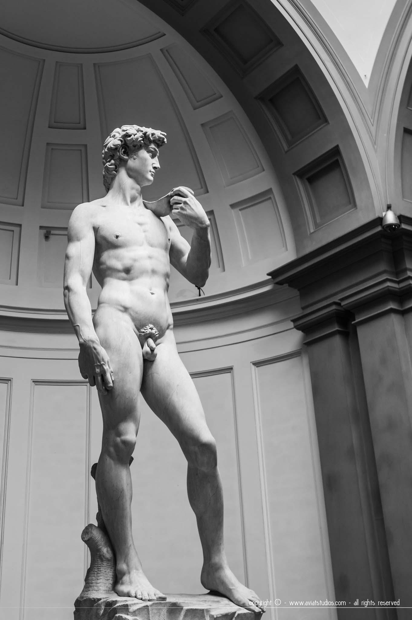 Un week-end à Florence - Le David de Michel Ange dans sa niche à la galerie de l'Académie