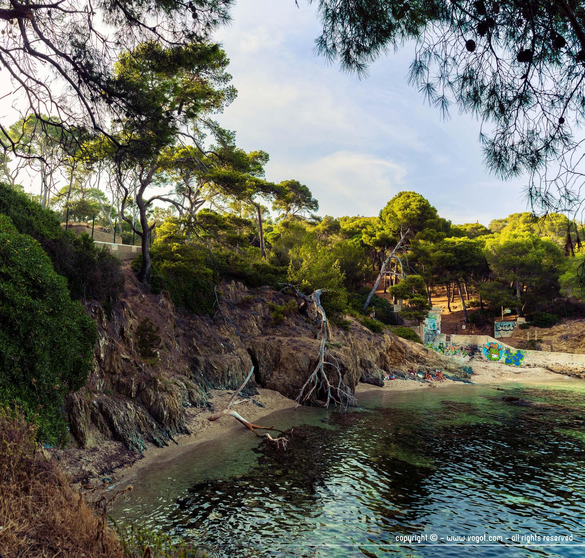 une crique avec son eau cristalline et ses pinsle long du sentier du littoral menant au port du Niel