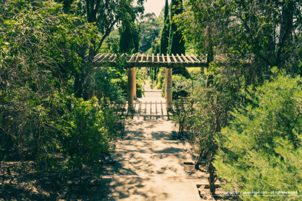 Domaine du Rayol - La grande perspective traversant la pergola