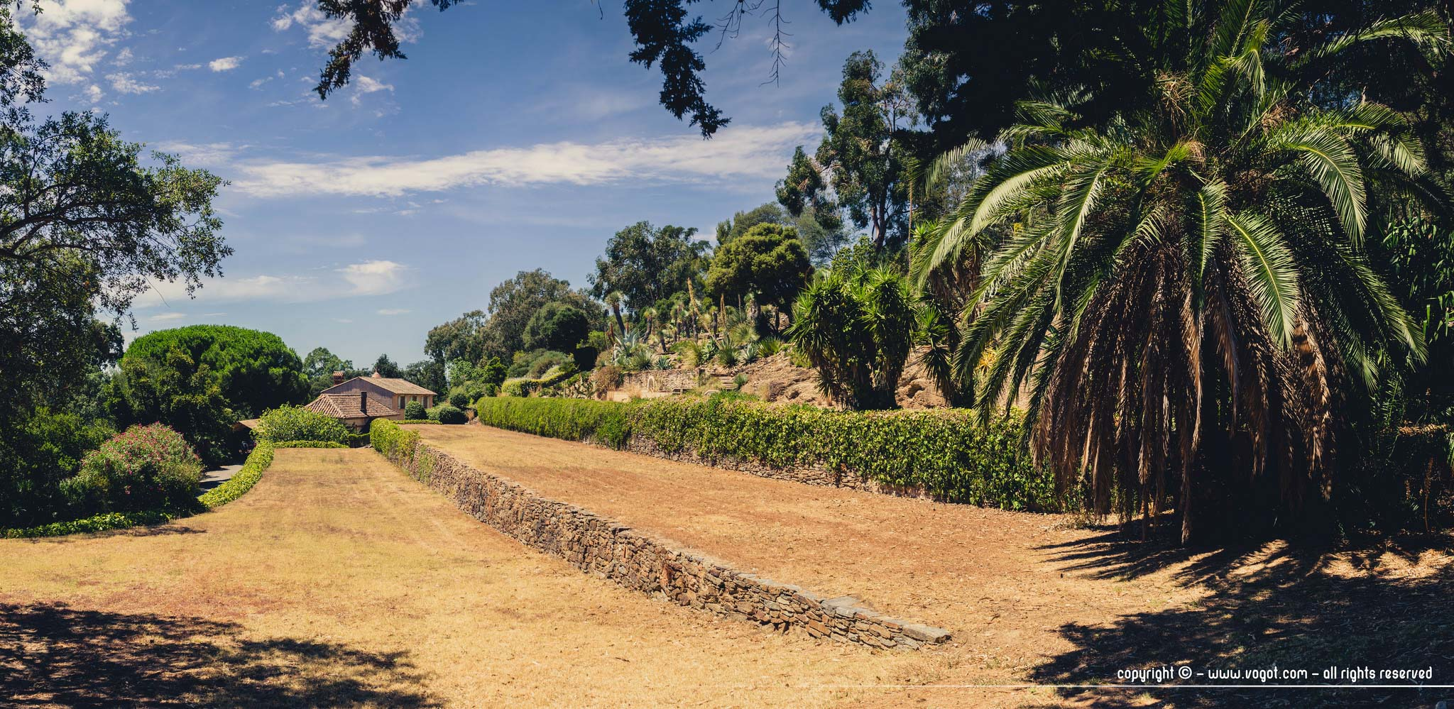 Domaine du Rayol - les terrasses en contrebas du jardin d'Amérique aride