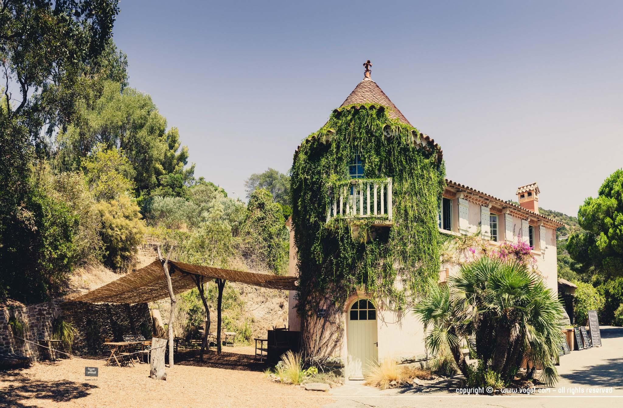 Visiter le domaine du rayol jardin plan taire et sentier - Domaine du rayol le jardin des mediterranees ...
