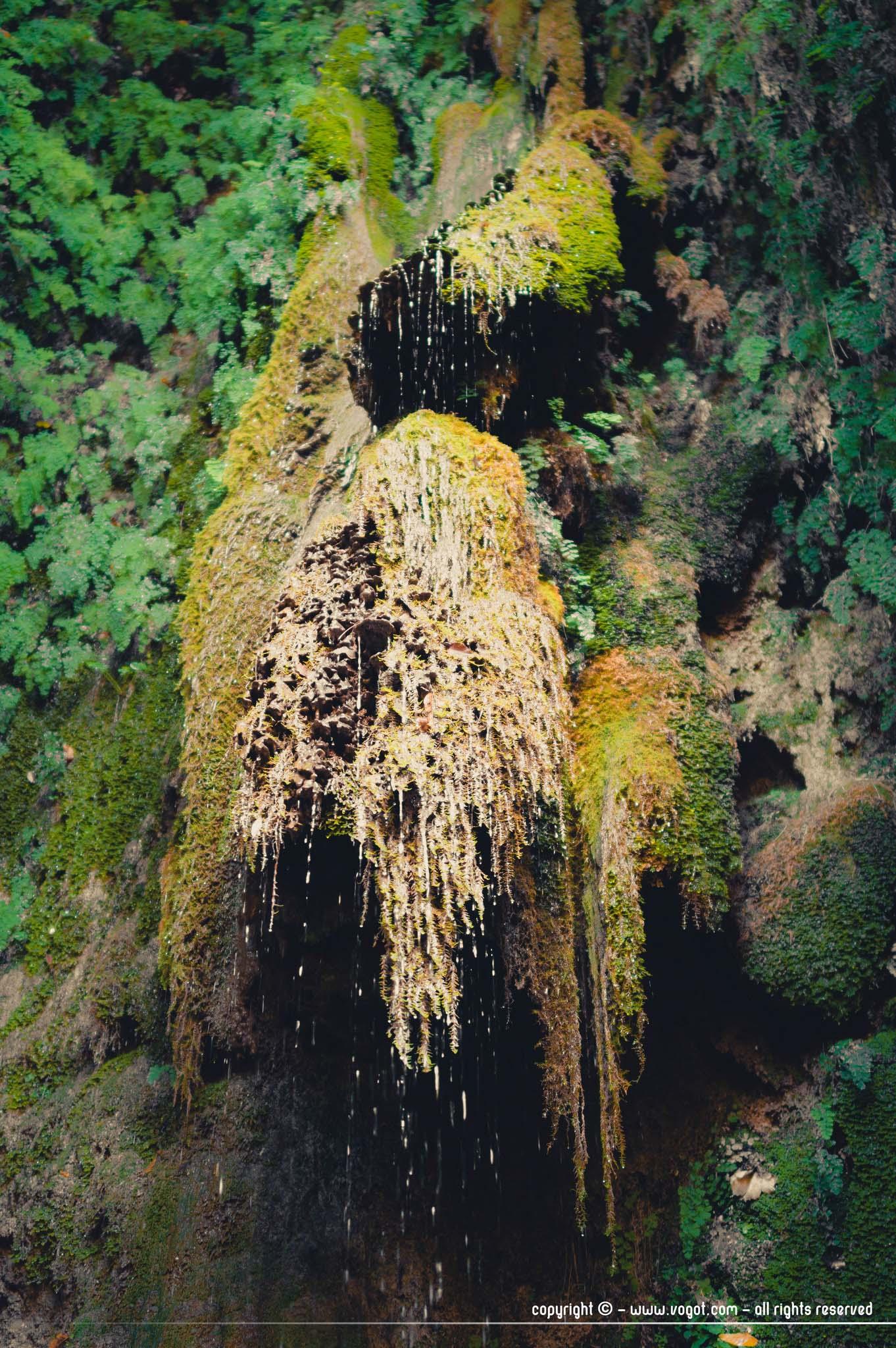 Cascade sédimentaire