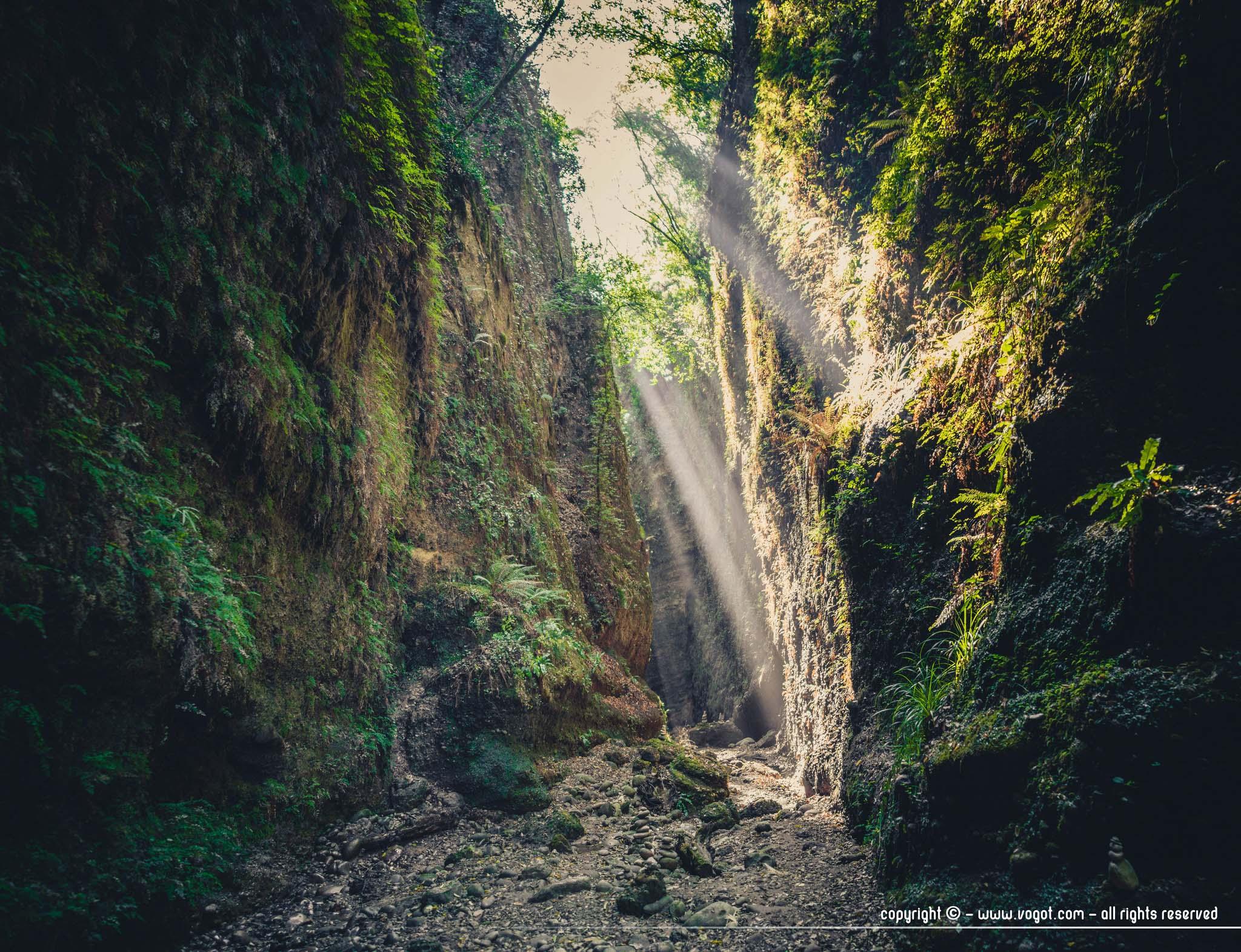 Le vallon obscur du Donareo – pour une après-midi nature