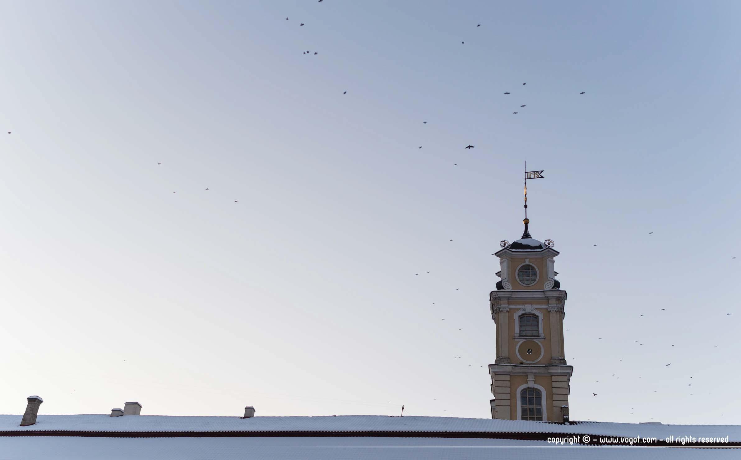 une semaine à Vilnius - L'Université de Vinius