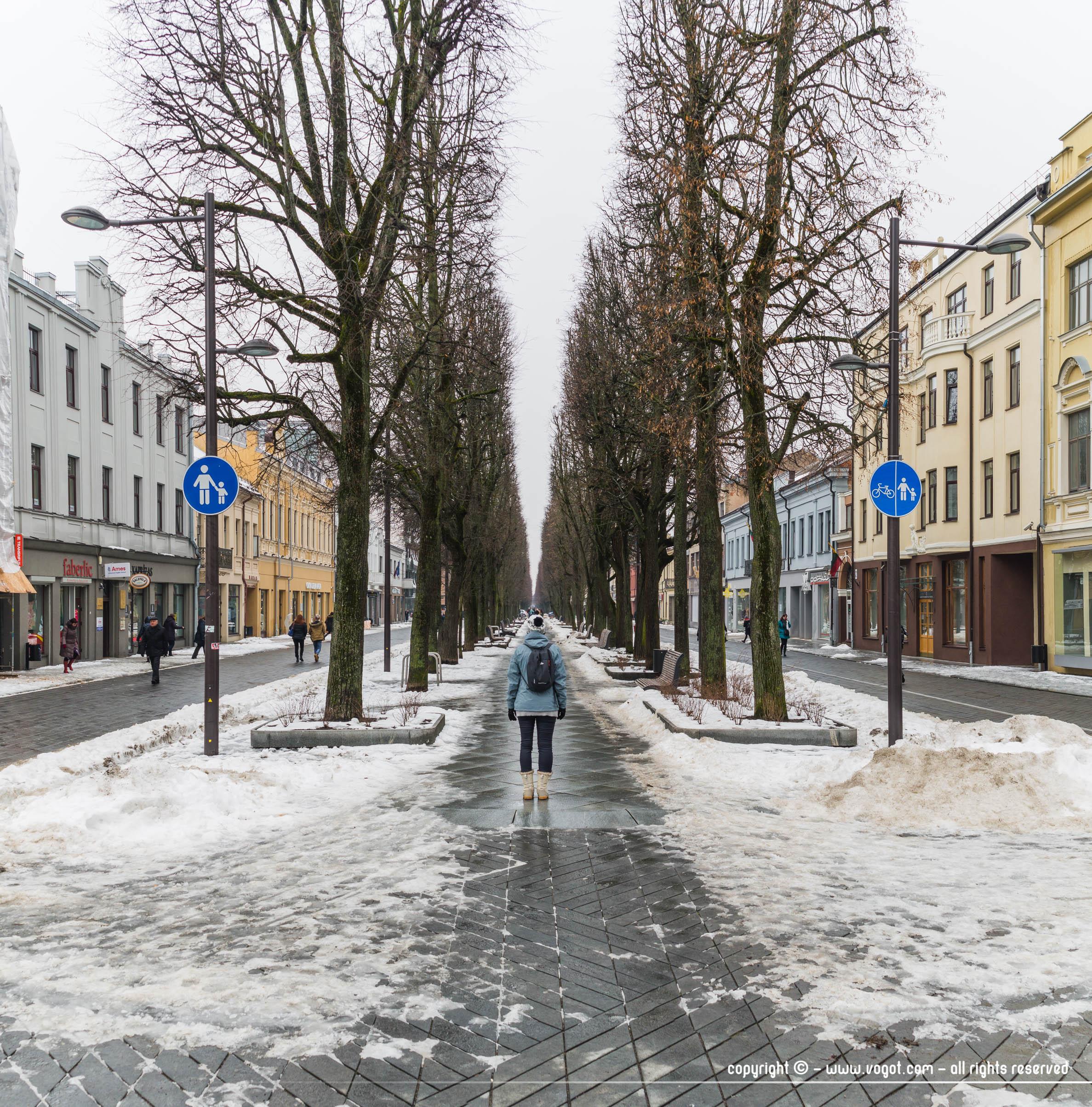 Une journée à Kaunas - Avenue Laisvės, longue rue piétonne