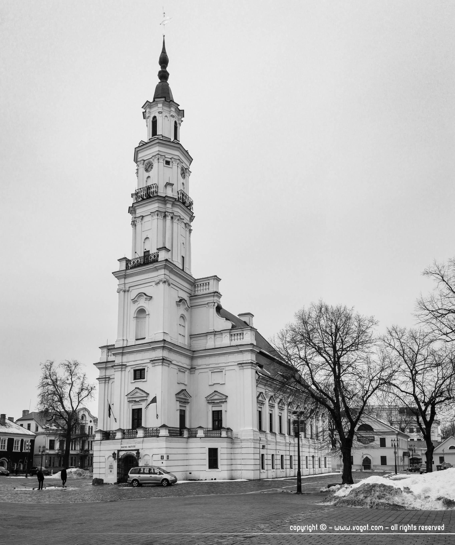 White swan, l'hôtel de ville de Kaunas